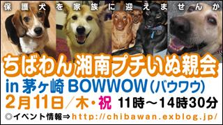 20100211_chigasaki_banner320x180.jpg